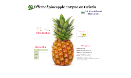 Effect of pineapple enzyme on Gelatin