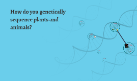 How do you genetically sequence plants and animals?