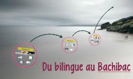 Du bilingue au Bachibac