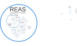 Copy of Copy of Mapa organizativo de REAS