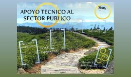 ASISTENCIA TECNICA Y APOYO AL SECTOR PUBLICO