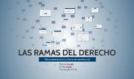 LAS RAMAS DEL DERECHO