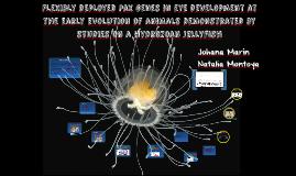 Flexibly deployed Pax genes in eye development at