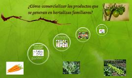 ¿Cómo  comercializar los productos que se generan en hortali