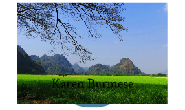 Nursing Care for Karen Burmese Population