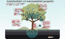 Kollektivistiskt och Individualistiskt perspektiv