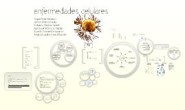 Enfermedades Celulares