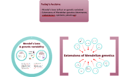 Mendel´s laws & variation + Extension of Mendelian genetics