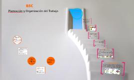 BSC pasos 8 y 9