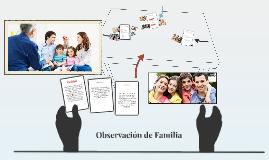 Observación de Familia