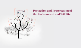 Protection and Preservation of the Environment and Wildlife