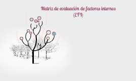 Copy of Matriz de evaluación de factores internos (EFI)