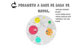 Copy of PEGAMETO A BASE DE BABA DE NOPAL.