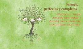FIRME PERFECTO Y COMPLETO