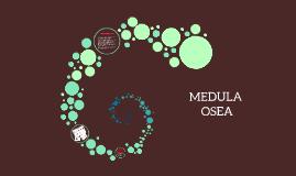 Copy of MEDULA OSEA