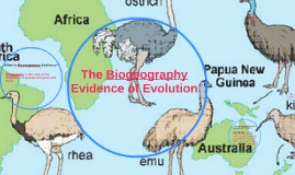Biogeography Evidence Of Evolution
