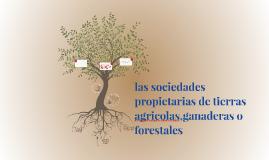 Copy of las sociedades propietarias de tierras agricolas,ganaderas o