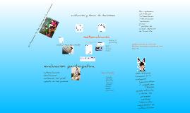 Copy of la evaluacion en el sistema de enseñanza aprendizaje
