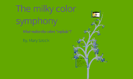 Copy of What Causes The Color Symphony