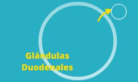 Glándulas Duodenales