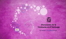 Prevención de la Violencia en el Noviazgo y Derechos Humanos