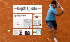 Non-profit Organization