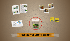 """Colourful Life"" Project"