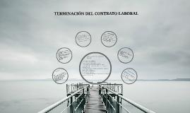 Copy of Causales de terminación