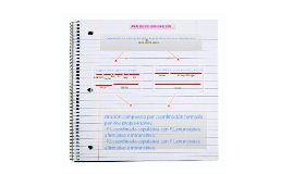 Como aprender a analizar oraciones compuestas.