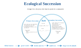 Copy of Ecological Succession by isaac sell on Prezi