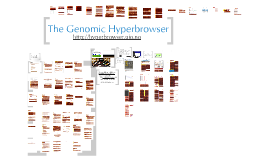 The Genomic HyperBrowser