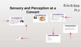 Sensory and Perception at a Concert