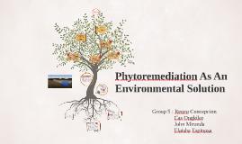 Phytoremediation As An Environmental Solution