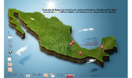 Copy of Programa de Pagos por servicios de captura de Carbono, Biodi