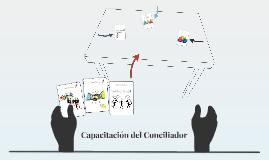 Copy of Capacitacion del Conciliador