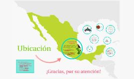 **Imperio Azteca**
