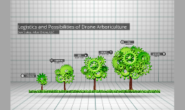 Logistics and Possibilities of Drone Arboriculture