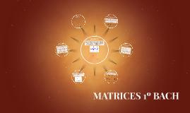 MATRICES 1º BACH