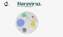 Norovirus.