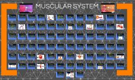 Anatomy & Physiology: Muscular System