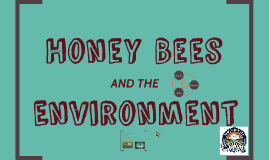 Honey Bees and the Environment