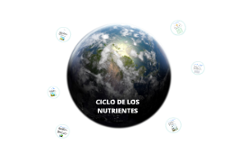 ciclo nutrientes