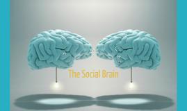 Social Brains (Grad class)