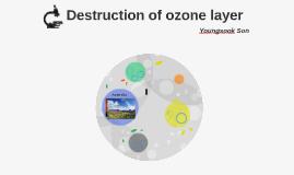 Destruction of ozone layer