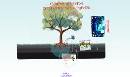 Ciencias de la vida:Estructura de las plantas.