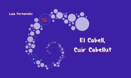 ELS CABELLS I EL CUIR CABELLUT
