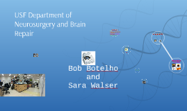 USF Department of Neurosurgery and Brain Repair