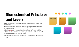 Biomechanical Principles and Levers