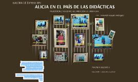 ALICIA EN EL PAÍS DE LAS DIDÁCTICAS