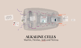 ALKALINE CELLS